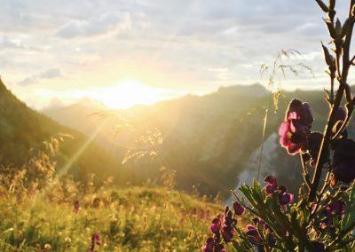Sonnenaufgang Tannheimer Tal
